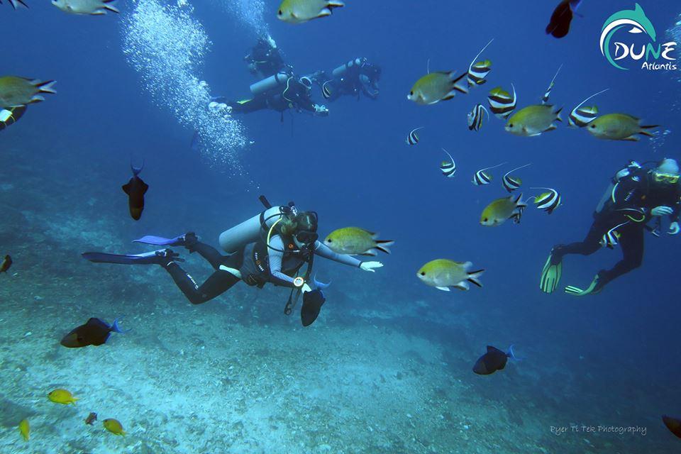 Ce qu'il faut savoir avant de faire de la plongée à Bali