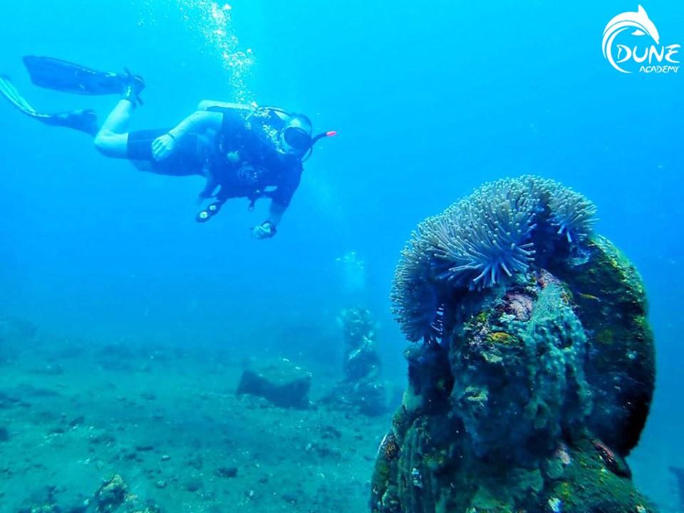 Les différents sites où vous pourrez effectuer votre baptême plongée Bali