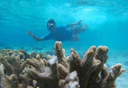 Bali plongée sous-marine, une expérience hors du commun