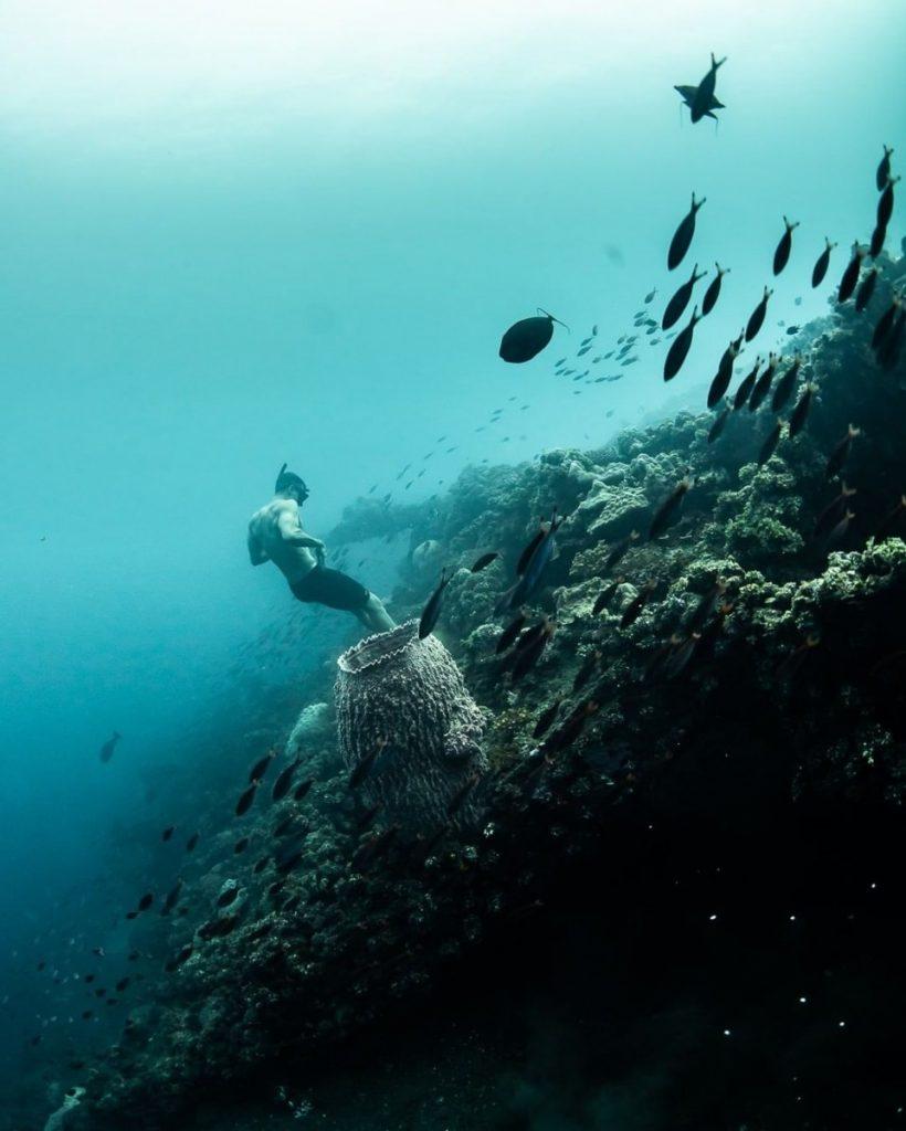 Plongée au mur d'Amed